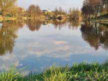 rybník NEPLECH