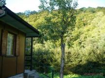 relaxace v lůně přírody