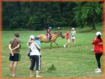 jizda na koních
