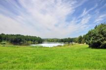 Olešský rybník